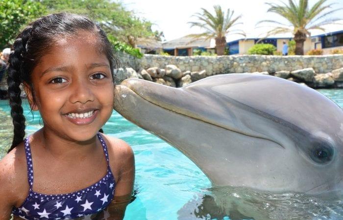 Dolfijnen Encounter