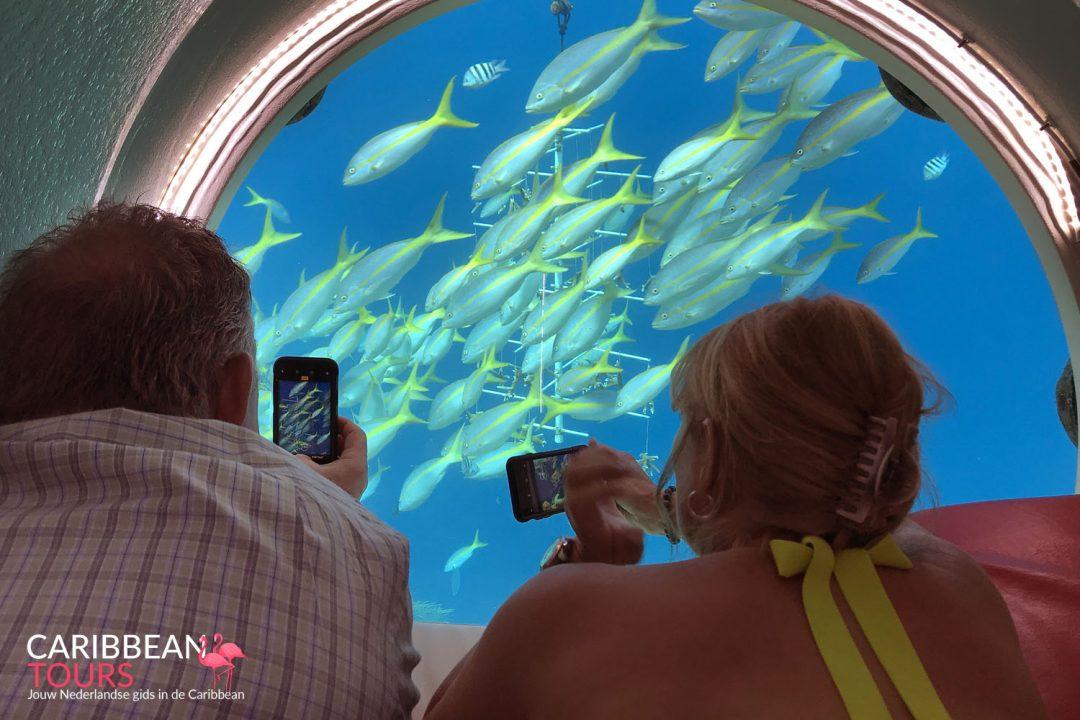 Ocean Lens
